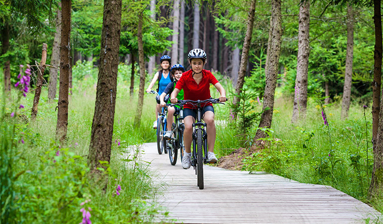 Three bicyclists ride on a path.